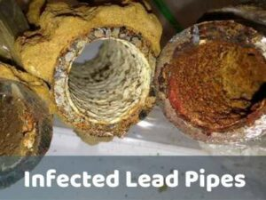 infected lead pipes